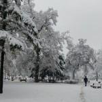 belgrade-2018-11